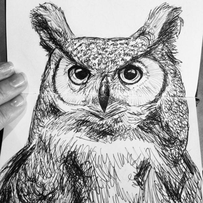 owl drawing sketch moleskine sketchbook