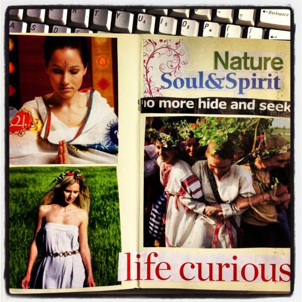 life curious - creative business plan