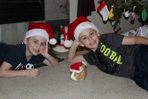 Kids and guine ig wth santa hats on
