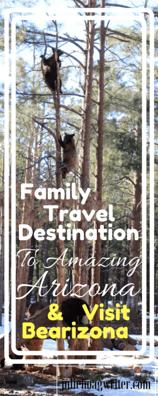 Arizona is an amazing family travel destination because the state offers many fantastic family experiences, plus the weather is ideal in the spring. family travel   family travel destinations   family travel tips   vacation ideas   vacation ideas family   vacation ideas usa   vacation ideas arizona