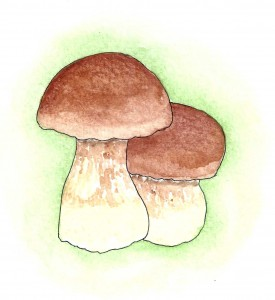mushrooms-275x300