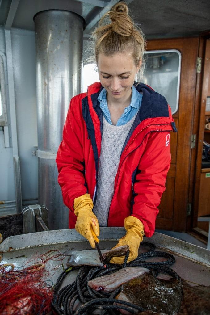 Slethvar bæredygtig fisk