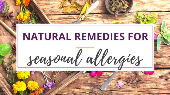 a variety of herbs used in natural remedies for seasonal allergies