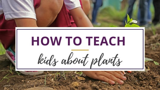 how to teach kids about plants by having them plant vegetables outdoors