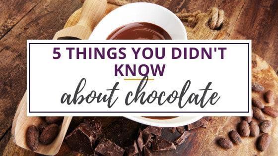 chocolate secrets in chunks of chocolate and hot chocolate