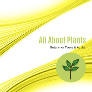 All About Plants: A Botany Course for Teens and Adults