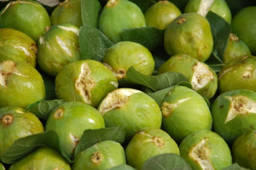 Figues au marché de Monterosso