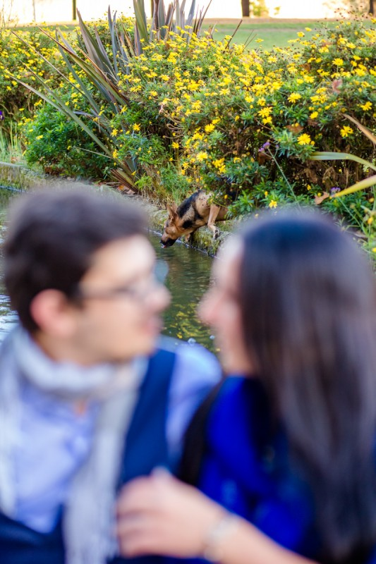 seance photo couple Toulouse prairie des filtres Julie rivière Photographe Toulouse