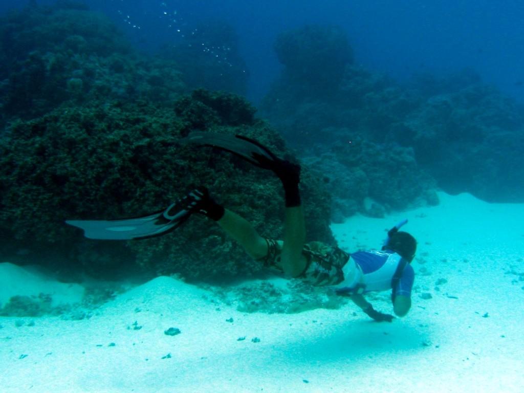 Bora Bora Dive 6