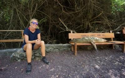 Amazing Galapagos