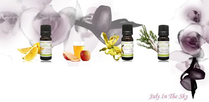 blog beauté astuces naturelles soin cheveux brillance vinaigre cidre huile essentielle citron ylang arbre thé avis