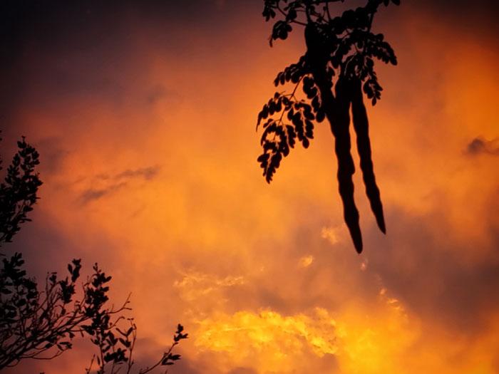 Coucher de soleil sur les tropiques