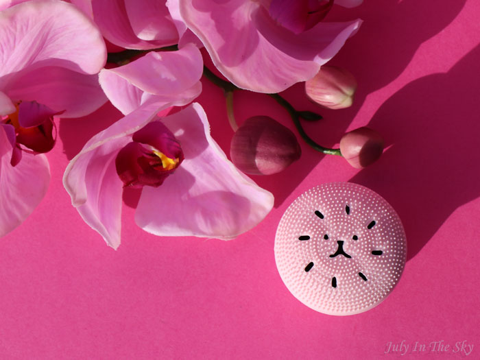 blog beauté kbeauty yestsyle Exfoliating Jellyfish Silicon Brush Etude House