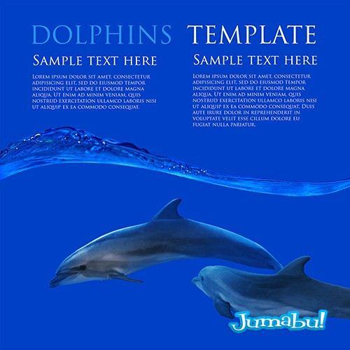 delfines-mar-nadando-dos