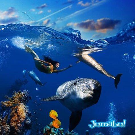 delfines-mar-nadando-saltando-sirena