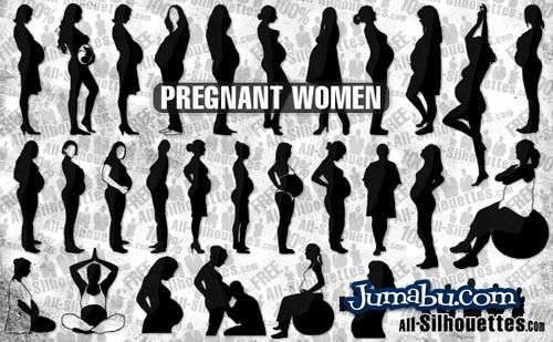 vector-pregnant
