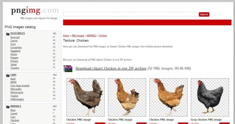 animales fondos transparentes gallinas - Un banco de imágenes con fondo transparente totalmente gratis
