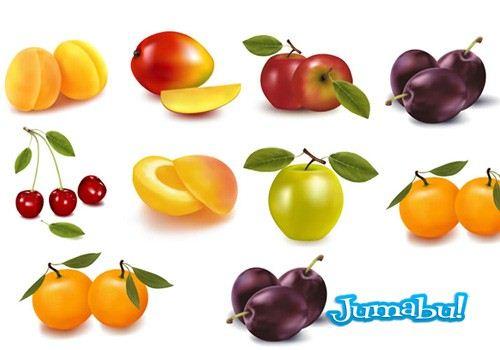 frutas estacion vectoriales - Frutas de Estación en Vectores