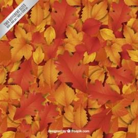 hojas otono marrones vectores - Hojas de otoño en vectores para descargar gratis