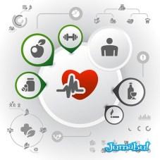 infografia-corazon-partes-vectores