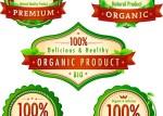 precios contenedores ecologicos - Inserts de Precios Ecológicos y Naturales en Vectores