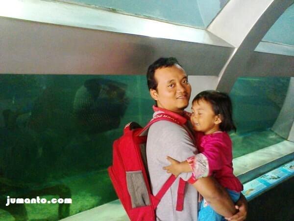 aquarium raksasa
