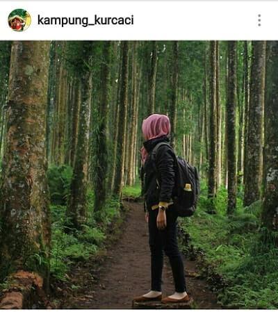 hutan wisata serang