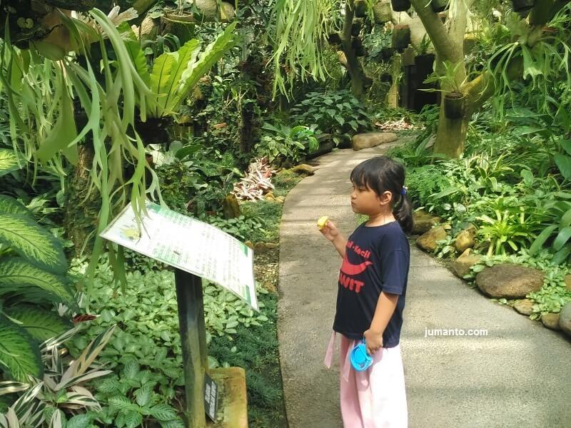 Jam Buka Dan Harga Tiket Masuk Kebun Raya Bogor terbaru