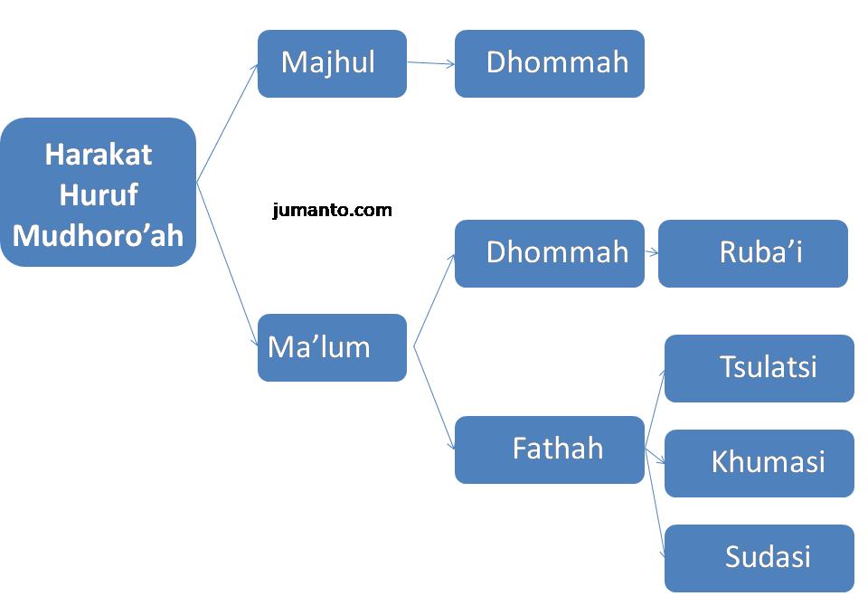 harokat huruf mudhoroah fiil mudhari ma'lum dan majhul mabni mu'rab