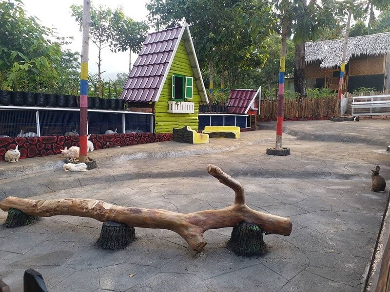 foto wisata taman bunga celosia umbul helau di kemiling bandar lampung