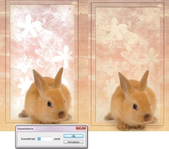 konijntje 14