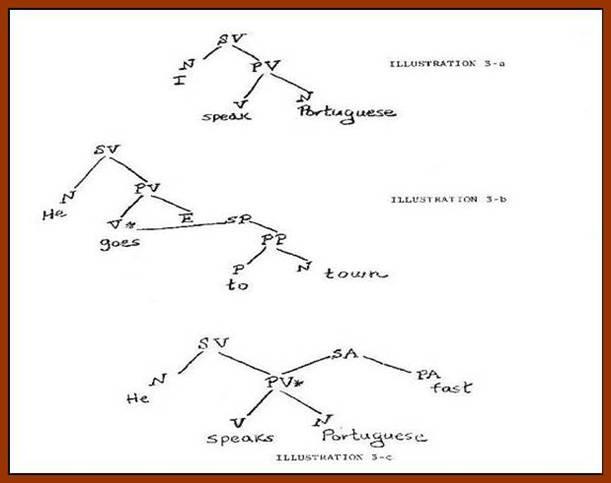morphology tree diagram 1998 ford explorer wiring radio language teaching