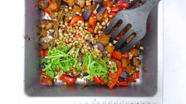 Roasted Mediterranean Salad Recipe with eggplant, bell pepper, lentils and harissa!