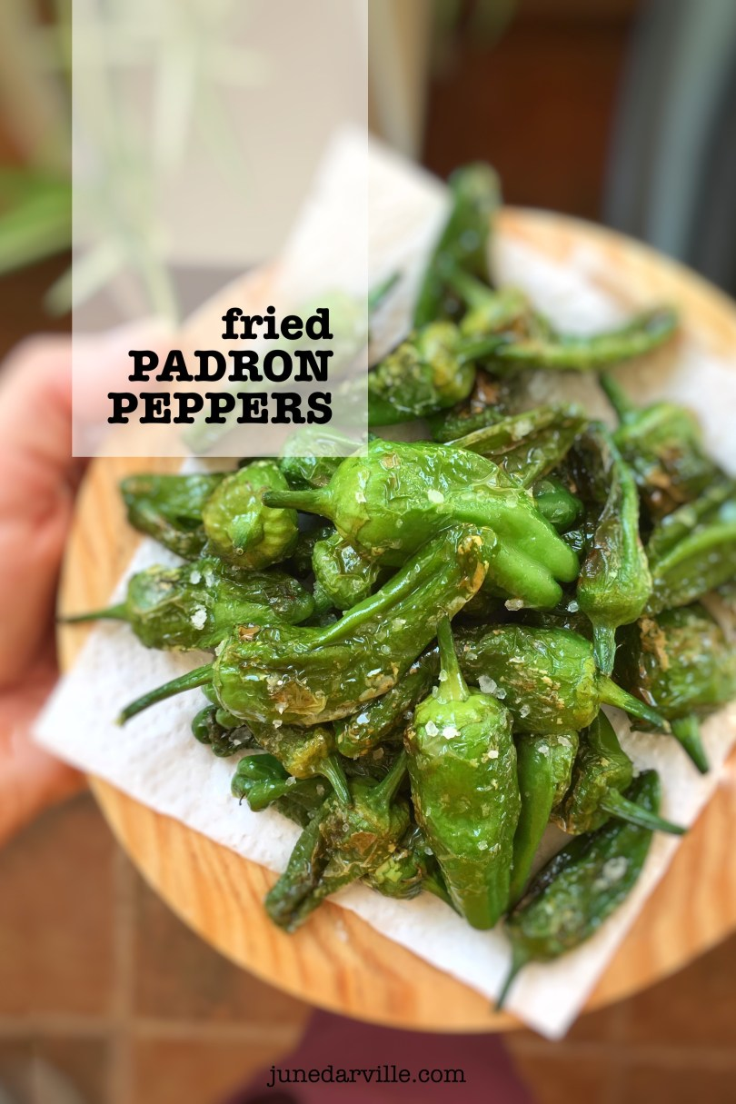 There's no tapas dinner without a plateful of charred pimientos de Padron... These fried padron peppers are so easy to prepare! Have you tasted them before?