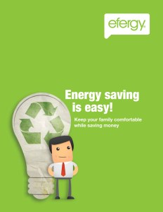 efergy Engery Saving Guide 2017 cover