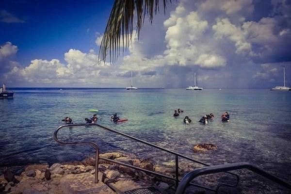 cozumel shore diving