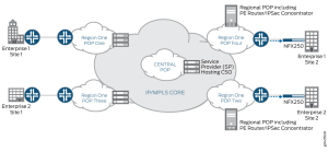 Topology of the Cloud CPE and SDWAN Solutions  Technical