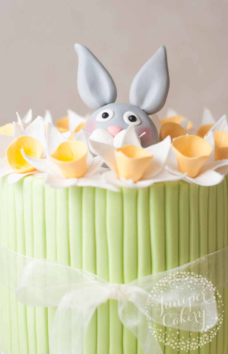 Rabbit and daffodil party cake by Juniper Cakery