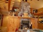 1035-Wickman-fireplace2