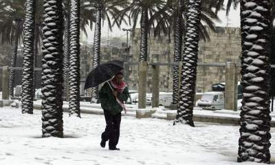 États-Unis : Du jamais-vu depuis 29 ans, il neige en Floride 37