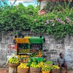 Haïti-Culture: Best Haiti Challenge, une initiative pour rehausser l'image du pays 28