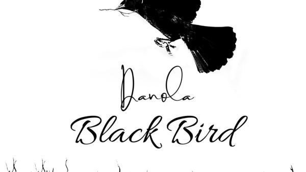 Danola prend son envol avec Black Bird