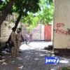 Menace d'incendie : Des policiers occupent les locaux du bureau central de l'EDH