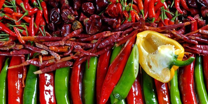 colorful chilli