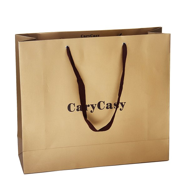 Paper-Bag-Shopping-Bag-Paper-Shopping-Bag-ZB-T25-