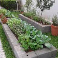 horta em condominio