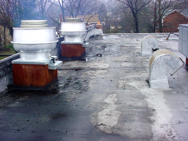 Roof Grease Damage 6