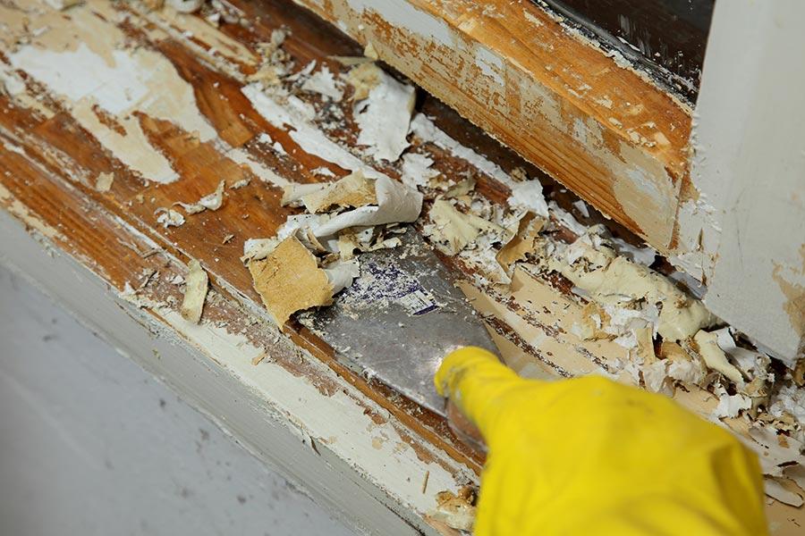 Lead-Based Paint Hazards