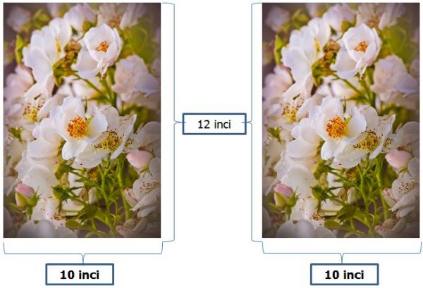 contoh ukuran foto 10R