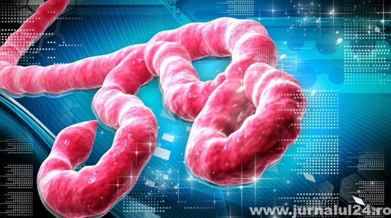 Ebola, un pericol internațional